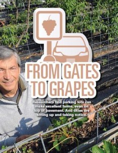 TPP-2013-03-From Gates to Grapes