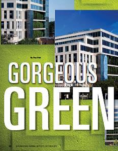 TPP-2013-10-Goregous Green