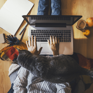 Woman sitting on the floor typing on a laptop computer with a cat climbing on her lap.